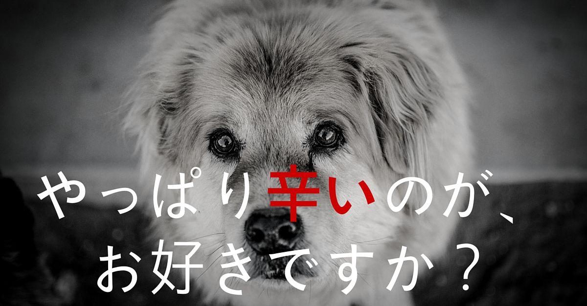 nihonshudo06