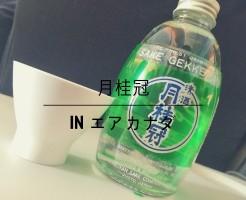 AirCanada_Gekkeikan00