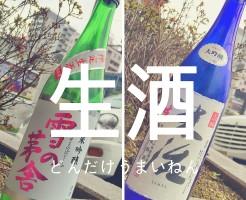 Blog_Namasake00