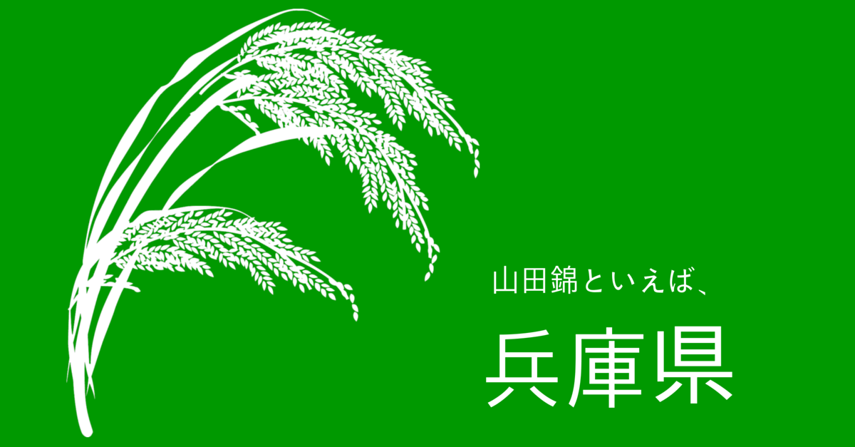 syuzoukoutekimai05